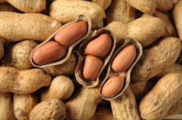 20111011-peanut-shell